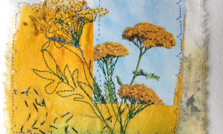 Ladybird yellow flora sold